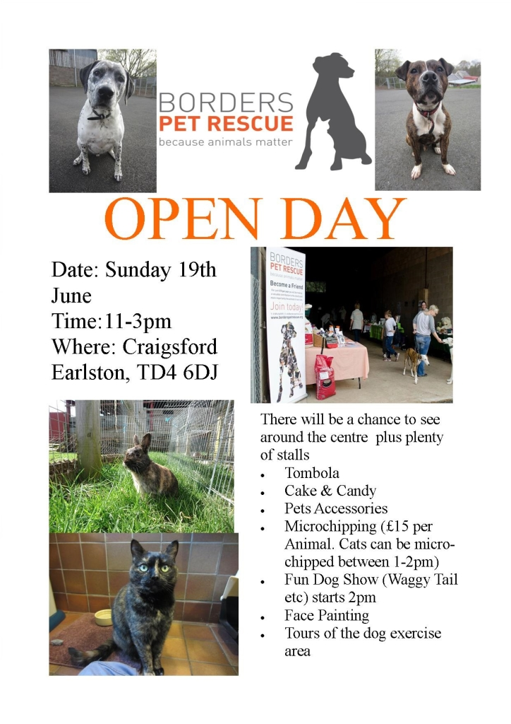 Open Day Poster 2016