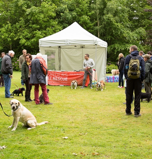 Borders Pet Rescue Floors Castle Walk 2015