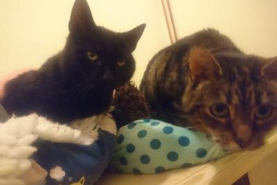 Ella & Ruby