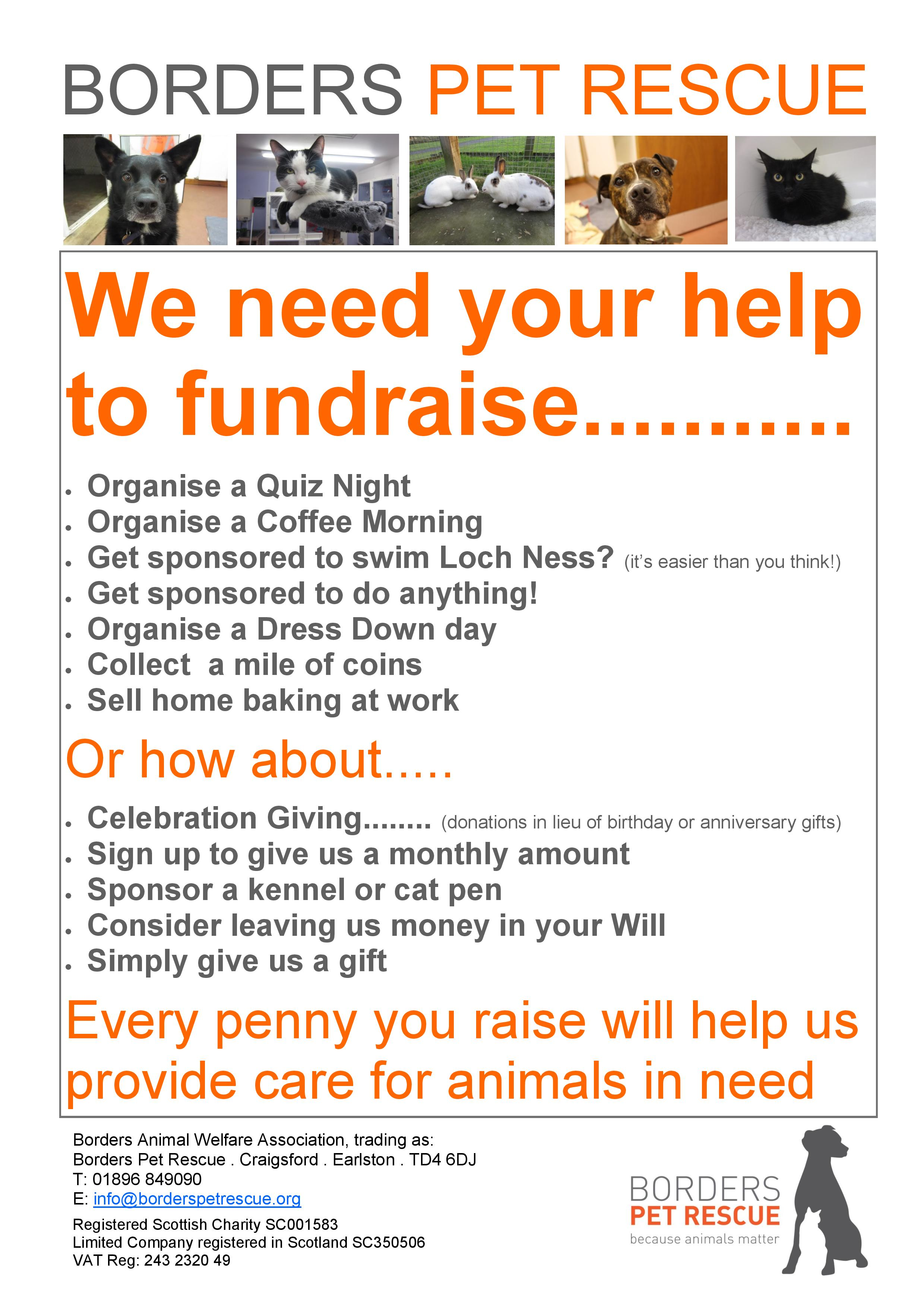 Fundraising ideas poster-page-001